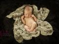 Einfühlsame Neugeborenen Fotografie in Kiel - Pankau Photography