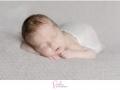 Neugeborenen-Fotografie_pankau-photography-5.jpg