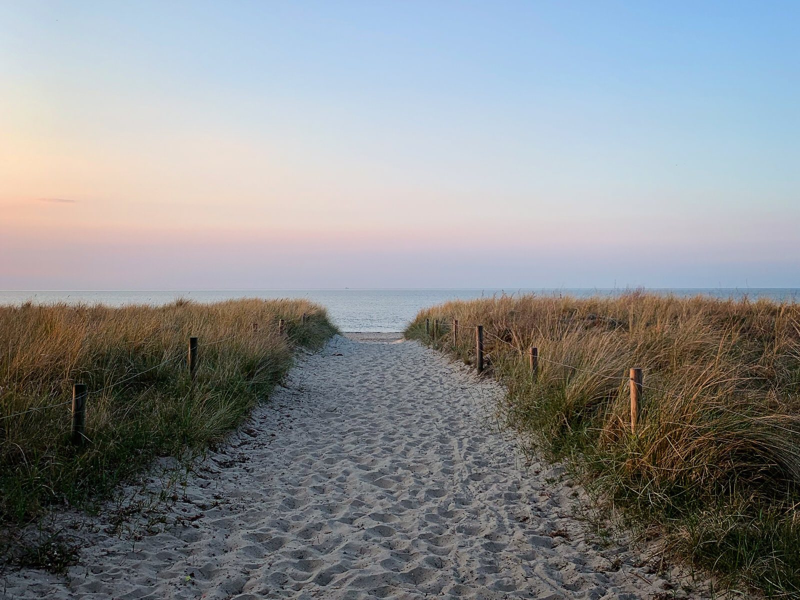 Ein Weg aus hellem Strandsand führt mittig zwischen Dünengras hindurch. Im Hintergrund sieht man die blaue Ostsee und am Himmel einen rosa Streifen.